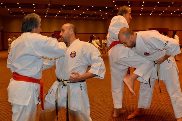 Oshukai Karaté Kobudo Strasbourg / Karaté Self Defense